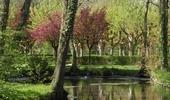 Landschap rond Auxerre