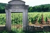 Welbekende wijngaarden