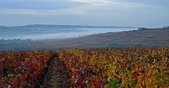 Santenay in de herfst, door Mike Long
