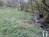 stream leading to lake