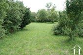 Lawn area of garden