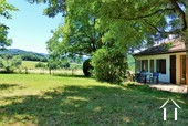 back garden in the summer