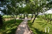 Fruit tree alley