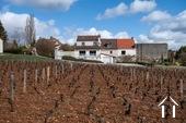Prachtig luxueus huis met uitzicht op wijngaarden.